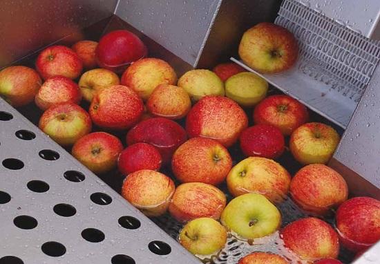 apple wash1
